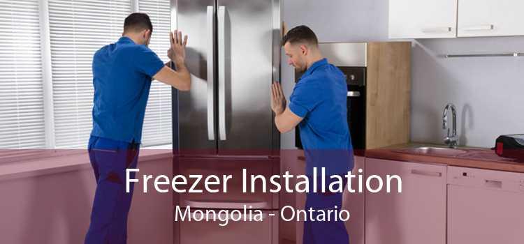 Freezer Installation Mongolia - Ontario