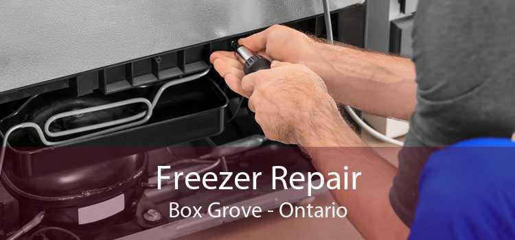 Freezer Repair Box Grove - Ontario