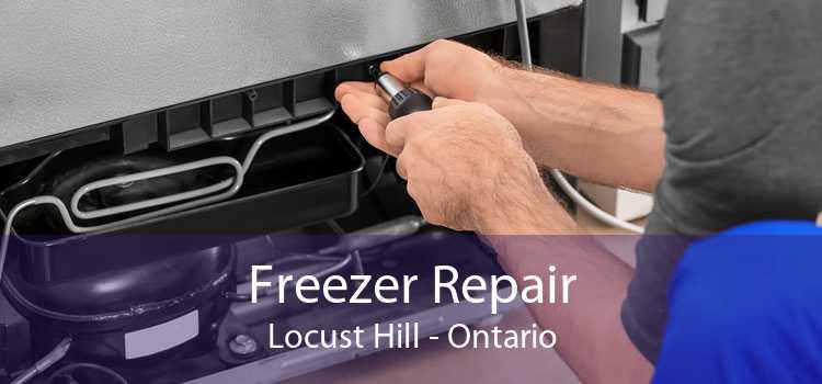 Freezer Repair Locust Hill - Ontario
