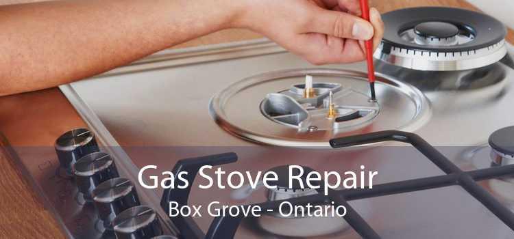Gas Stove Repair Box Grove - Ontario