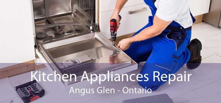 Kitchen Appliances Repair Angus Glen - Ontario