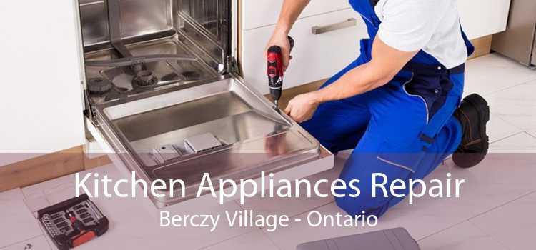 Kitchen Appliances Repair Berczy Village - Ontario