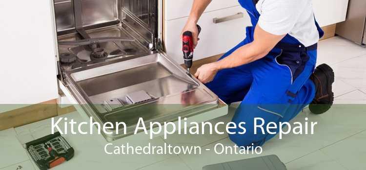 Kitchen Appliances Repair Cathedraltown - Ontario