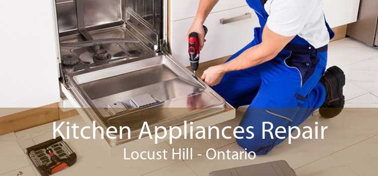 Kitchen Appliances Repair Locust Hill - Ontario