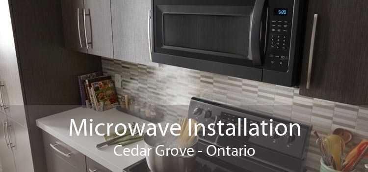 Microwave Installation Cedar Grove - Ontario