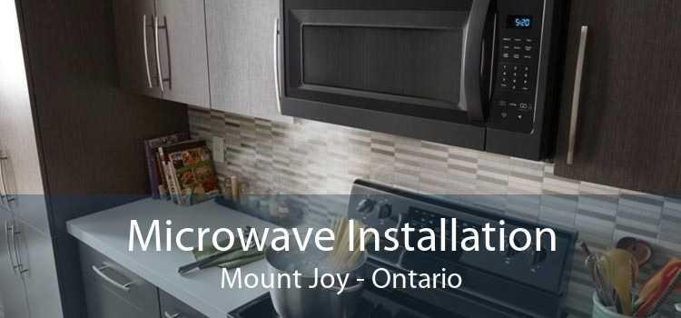 Microwave Installation Mount Joy - Ontario