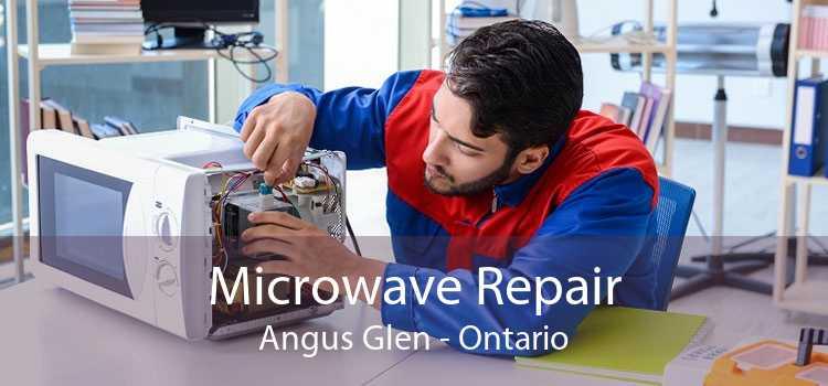 Microwave Repair Angus Glen - Ontario