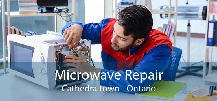 Microwave Repair Cathedraltown - Ontario