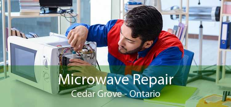 Microwave Repair Cedar Grove - Ontario