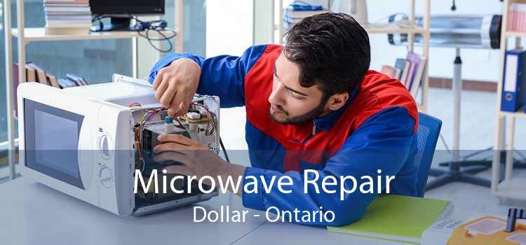 Microwave Repair Dollar - Ontario