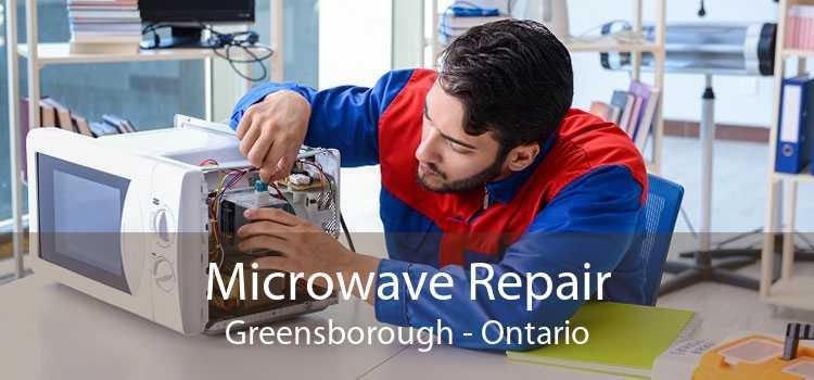 Microwave Repair Greensborough - Ontario
