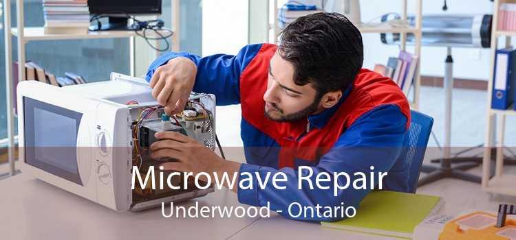 Microwave Repair Underwood - Ontario