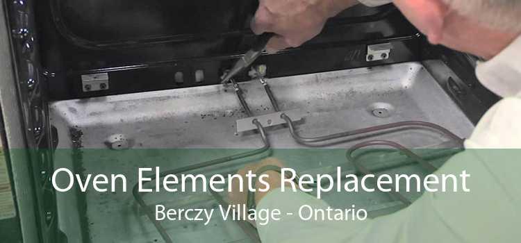 Oven Elements Replacement Berczy Village - Ontario