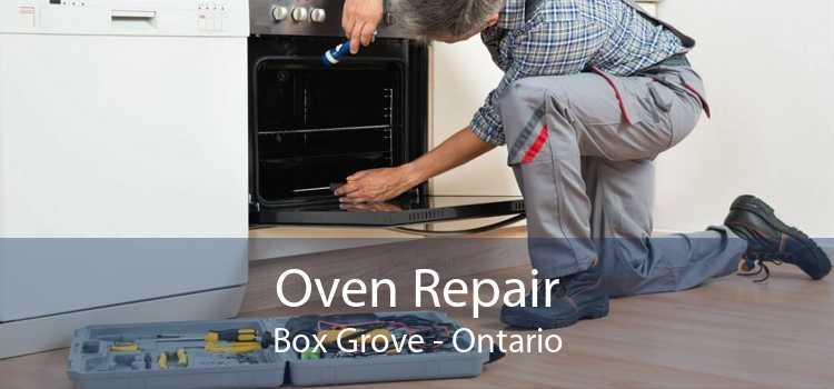 Oven Repair Box Grove - Ontario