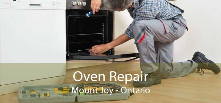 Oven Repair Mount Joy - Ontario