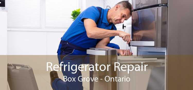 Refrigerator Repair Box Grove - Ontario