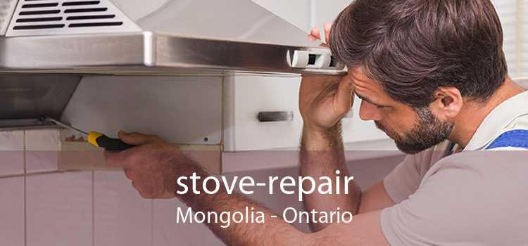 stove-repair Mongolia - Ontario